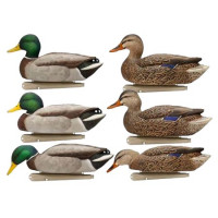 LOT DE 6 FORMES DE COLVERT AVIANX ACTIVES HD