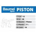 BAUMEL PISTON 12-70-16